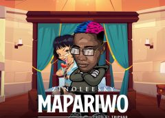 "New Music: Download ""Ma Pariwo"" By Zinoleesky"
