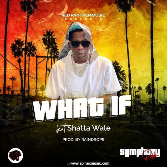 Shatta Wale - What If